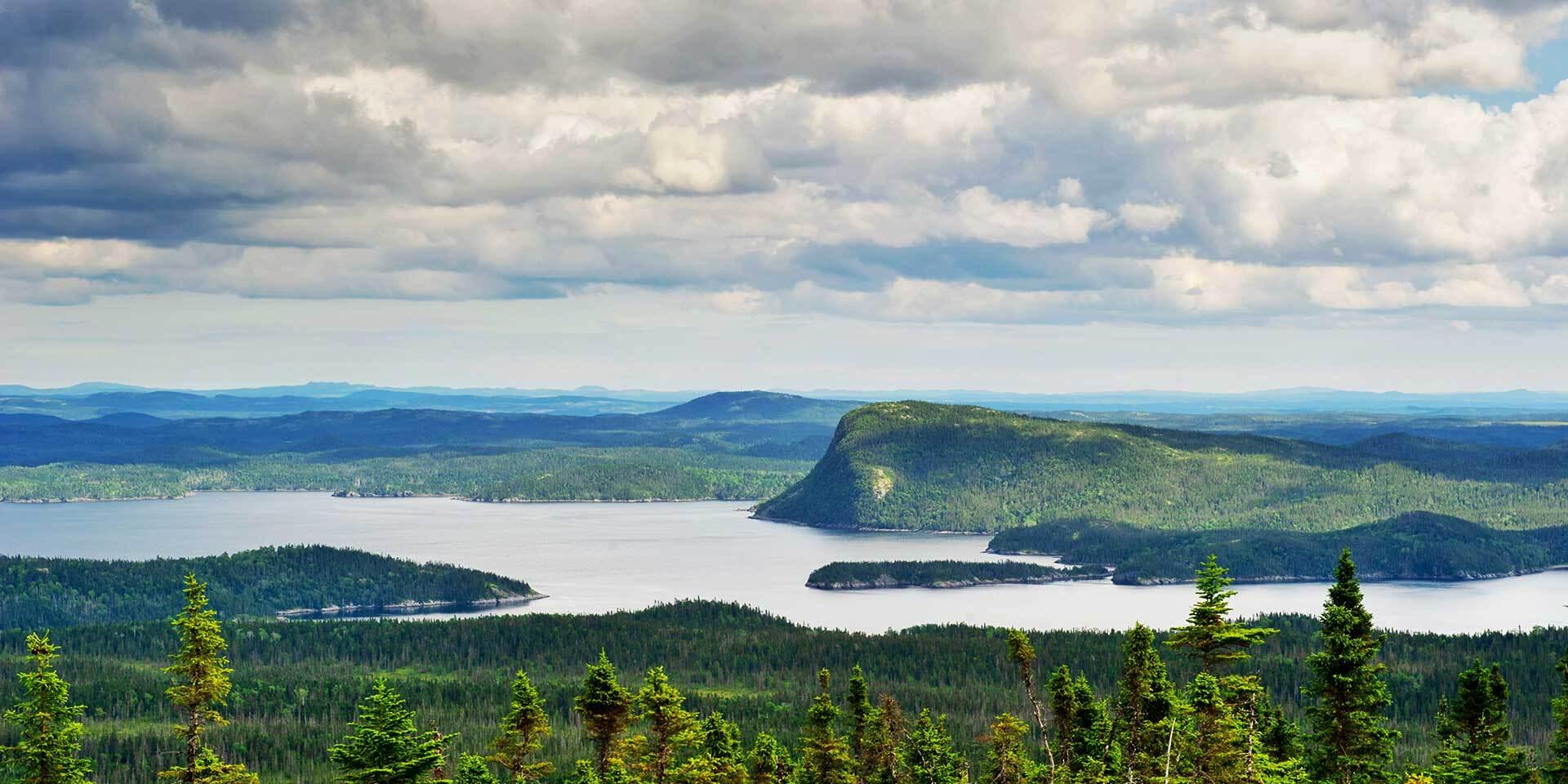 Grün und vielversprechend - ist das heutige Neufundland das «Vinland» Erikssons?